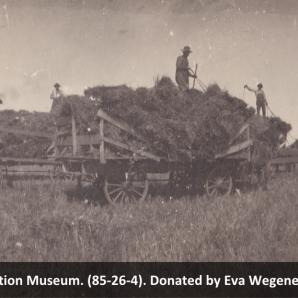 Threshing on the Max Albert Farm, circa 1910. Beiseker Station Museum (85-26-4).